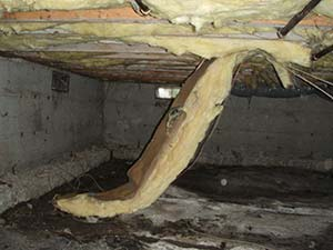 Damp Crawl Space With Wet Insulation